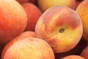 от персика понос у ребенка