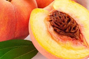 от персика понос