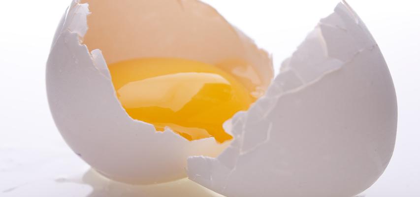 Может ли употребление яиц вызвать диарею?