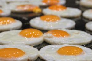 понос от жареных яиц